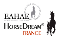 HorseDream France Kanyo consulting Equilibre-Ccoaching